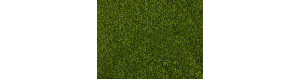 Foliáž, střední zelená, 20 × 23 cm, Noch 07300