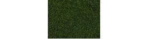 Foliáž, tmavá zelená, 20 × 23 cm, Noch 07301