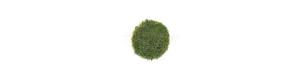Statická tráva 12 mm - časné léto 40 g, Model Scene 012-03