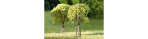 Mladé stromky, 10 kusů, H0/TT/N, Auhagen 70950