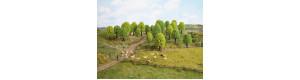 Listnaté stromy, 25 kusů, 5 až 9 cm, Noch 26801