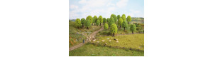 Listnaté stromy, 5 kusů, 5 až 9 cm, Noch 26902