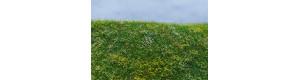 Kvetoucí louka, časné léto, Model Scene F562